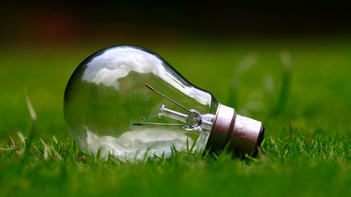 7 Ways to Live More Eco-Friendly Starting Today